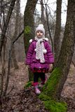 Little cute girl posing near a tree in an autumn forest. stock images