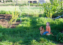 Little cute girl sits astride the big dog. Of red green grass and young seedlings Royalty Free Stock Image