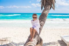 Little cute girl sitting on palm tree at the Stock Image
