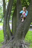 Little cute girl sitting on a tree. Nature. Royalty Free Stock Photography