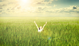 Little cute girl on wheat field,outdoor Stock Images