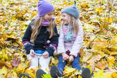 Little cute girls on the autumn meadow in a sunny Royalty Free Stock Image