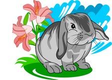 Little cute gray bunny Stock Photography