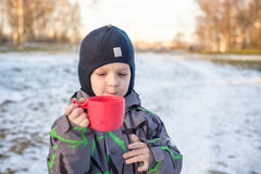 Little cute kid boy with cup of steaming hot chocolate or children punch. Happy child play in winter forest outdoors Royalty Free Stock Photos