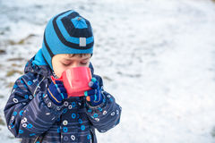 Little cute kid boy with cup of steaming hot chocolate or children punch. Happy child play in winter forest outdoors Royalty Free Stock Images