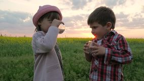 Little Cute Kid, Boy and girl Drink water, children quench thirst, kid`s hands hold glass clean pure water on sunset stock video footage