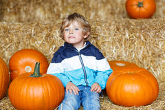 Little cute kid boy sitting with huge pumpkin on halloween or th Royalty Free Stock Images