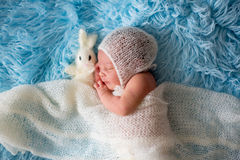 Little cute newborn baby boy, sleeping wrapped in white wrap Stock Images