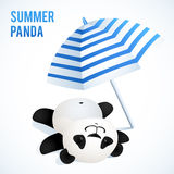 Little cute panda taking sunbath under blue Stock Photos