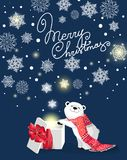 Little cute polar bear with red scarf and gift on blue bacjground with snowflake. White bear with snowflakes. on blue background.Christmas and New-Year concept Royalty Free Stock Image