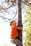 Little cute real boy climbing on tree hight, outdoor lifestyle c Stock Photos