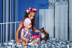 Little cute sisters and sphinx cat Stock Photo