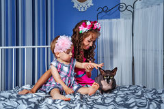 Little cute sisters and sphinx cat Stock Photos