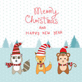 Little cute small animal Raccoon,Fox and  Monkey in Christmas Co Royalty Free Stock Photography