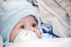 Little cute smiling  baby  boy Stock Photography