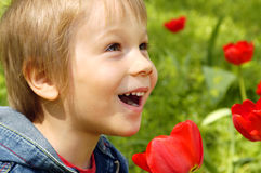 Little cute smiling boy with tulips royalty free stock image