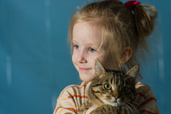 Little cute smiling girl hugging cat Stock Images