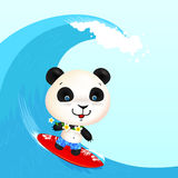 Little cute surfer panda surfing in blowing wave Stock Image