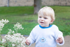 Little cute toddler boy with blond hairs Royalty Free Stock Image