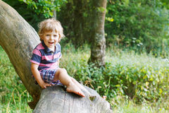Little cute toddler boy having fun on tree in  forest Royalty Free Stock Photo
