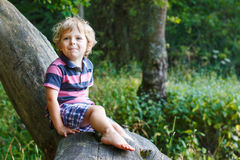 Little cute toddler boy having fun on tree in  forest Stock Photo