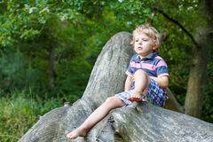 Little cute toddler boy having fun on tree in  forest Stock Images