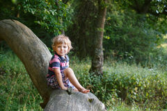 Little cute toddler boy having fun on tree in  forest Royalty Free Stock Photography