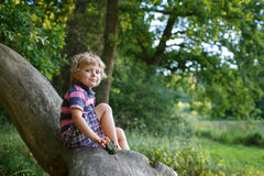 Little cute toddler boy having fun on tree in  forest Stock Photos