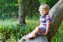 Little cute toddler boy having fun on tree in  forest Royalty Free Stock Image