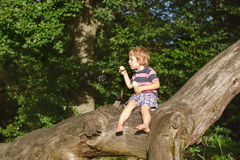 Little cute toddler boy playing with soap bubbles in forest. Little cute toddler boy playing with soap bubbles in summer forest Royalty Free Stock Photography
