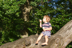 Little cute toddler boy playing with soap bubbles in forest. Little cute toddler boy playing with soap bubbles in summer forest Stock Image