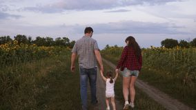 Little daughter jumping holding hands mom and dad. Family with small child walks along road and laughs next to field of stock footage