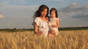 Little daughter kisses mom on a wheat field. happy family travels. baby in the arms of mom. mother walks with the baby stock video footage