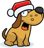 Little Dog Christmas Royalty Free Stock Photography
