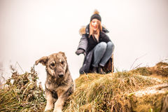 Little dog with girl outdoor Stock Photography