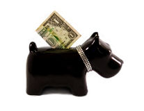 Little dog moneybox. Doggy moneybox with a diamond necklace Royalty Free Stock Photo