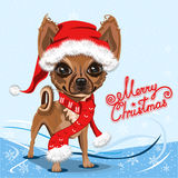 Little dog in a red Santa Claus hat Stock Images