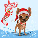 Little dog in a red Santa Claus hat Stock Photo