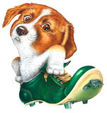 A little dog in a spike. Scanned hand-drawn illustration, personified an animal Stock Images