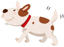 Little dog wagging its tail Royalty Free Stock Image