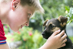 Little dog. Young dog and boy teenager Stock Photography