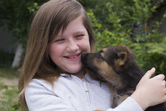 Little dog. Young dog and girl teenager Royalty Free Stock Photos