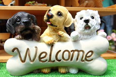 Little dogs. Dogs that make lovely faces in front of the bones Royalty Free Stock Photos