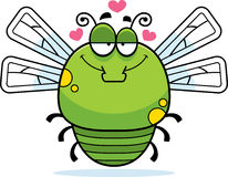 Little Dragonfly in Love Stock Photo