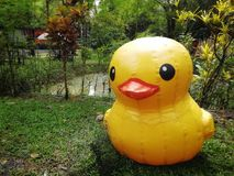 Little duck puppets. Large little duck puppets in a green garden awaiting children to play with stock photography