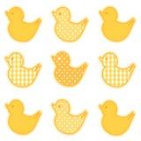 Little Duckies Royalty Free Stock Photos