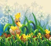 Little ducklings in garden Royalty Free Stock Photo