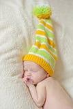 Little dwarf Stock Photos