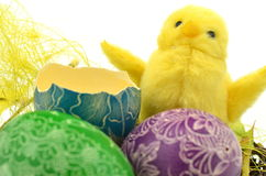 Little easter chicken and easter eggs Royalty Free Stock Photography