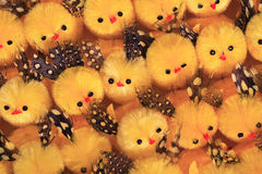 Little Easter chicks Royalty Free Stock Photos